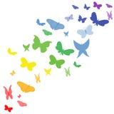 De vlinder van de regenboog Stock Foto
