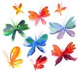 De vlinder van de zomer Royalty-vrije Stock Afbeeldingen
