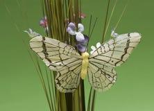 De vlinder van het document Stock Foto's