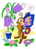De vlinder verzamelt dauw van de bloem Stock Afbeeldingen
