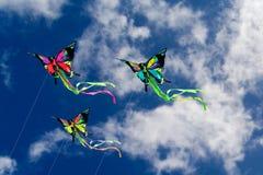 De Vlinders van vliegers Royalty-vrije Stock Foto