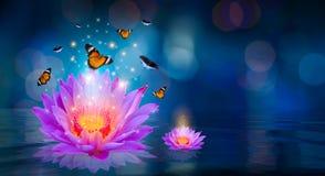 De vlinders vliegen rond de purpere lotusbloem die op het water Bokeh drijven stock illustratie