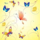 De vlindersvector van de lente Stock Afbeeldingen