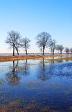 De vloed van de lente Stock Afbeeldingen