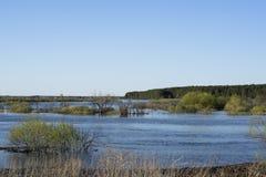 De vloed van de lente van de rivier Stock Afbeelding