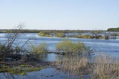 De vloed van de lente van de rivier Royalty-vrije Stock Foto