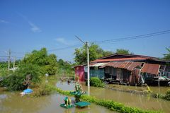 de vloed van het huiswater Stock Fotografie