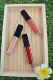 De vloeibare lippenstift, Lipgloss in elegante glasfles met zwart deksel, sloot en opent container met borstel stock foto