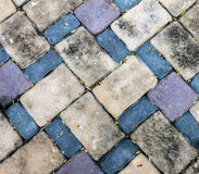 De vloer van het de steenblok van de vuilbaksteen heeft weinig droog blad stock foto
