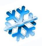 De vlok van de sneeuw Stock Foto