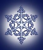 De vlok van de sneeuw Stock Foto's