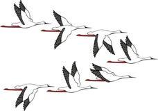 De Vlucht van de kraan royalty-vrije illustratie