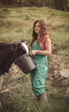 De voedende koeien van de landbouwer Stock Foto