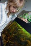 De voedende vissen van het meisje in aquarium royalty-vrije stock afbeelding