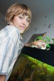 De voedende vissen van het meisje in aquarium stock fotografie