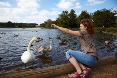 De voedende vogels van het meisje in een meer royalty-vrije stock afbeelding