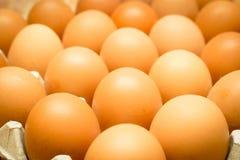 De Voedingswaarde van Eiwit is low-calorie, vetvrij Royalty-vrije Stock Afbeeldingen