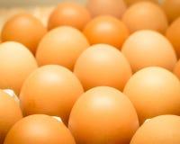 De Voedingswaarde van Eiwit is low-calorie, vetvrij Stock Fotografie