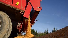 De voedselfabriek, Voedsel, graangewas-Tractor dumpt tarwekorrel stock video