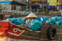 De voedselhandelaar bij Cai Rang-het drijven markt kan binnen Tho, Vietnam Royalty-vrije Stock Fotografie