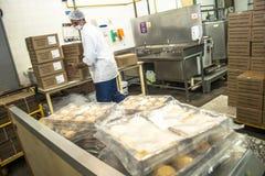 De voedselindustrie Stock Afbeeldingen