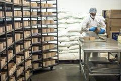 De voedselindustrie Stock Fotografie