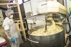 De voedselindustrie Stock Afbeelding