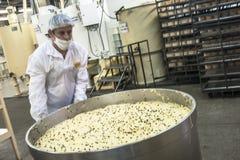 De voedselindustrie Stock Foto's