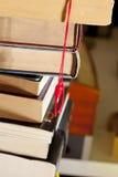 De voet, de referentie en de boeken van het gelukkige konijn Stock Foto