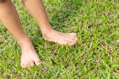 De voet die van de baby op het gras stappen royalty-vrije stock foto