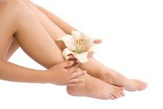 De voet en de hand van de vrouw met bloem Royalty-vrije Stock Fotografie