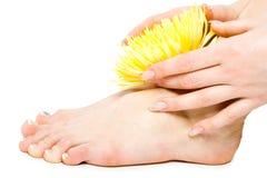 De voet en de hand van de vrouw met bloemen op wit Stock Foto