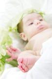 De voet van de uiterst kleine baby, baby in kool Stock Afbeeldingen