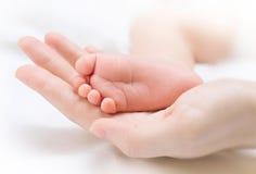De voet van de uiterst kleine pasgeboren baby op vrouwelijke hand royalty-vrije stock afbeeldingen