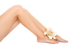 De voet van de vrouw met leliebloem Royalty-vrije Stock Afbeelding