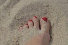 De voet van vrouwen Royalty-vrije Stock Foto's
