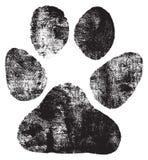 De voetafdruk van honden stock illustratie