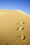 De Voetafdrukken van de woestijn royalty-vrije stock afbeelding