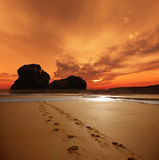 De voetafdrukken van de zonsondergang royalty-vrije stock foto