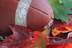 De Voetbal van de herfst Royalty-vrije Stock Foto's
