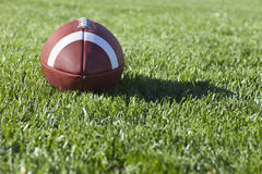 De voetbal van de universiteitsstijl op grasgebied Stock Foto's