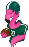 De Voetbal van Florida Royalty-vrije Stock Fotografie