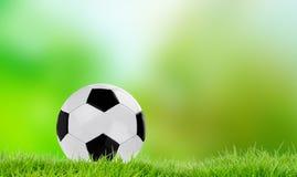 De voetbal van teamspelen op gras royalty-vrije stock foto's