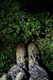 De voeten behoren tot aarde Stock Foto's