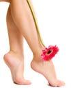 De voeten en de bloem van Nice. Royalty-vrije Stock Foto