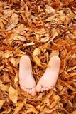De voeten van Childs die in dalingsbladeren worden begraven Stock Foto's