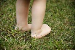 De voeten van de baby op gras stock foto