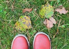 De voeten van de herfst Stock Foto