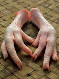 De voeten van de kip Stock Foto's