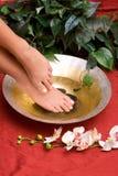 De voeten van de vrouw stock afbeelding